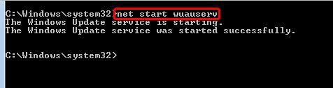 net start